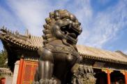 在古代的中国根本没有狮子,为什么会在权贵门口看到石狮子呢?