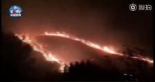 江西景德镇森林火灾目前已扑灭