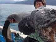男子捕鱼捞上来一条超级大鱼,村民看见了却连忙要搬家