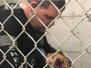 警犬追捕逃犯时突遭豪猪攻击 被扎200多根刺
