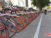 深圳摩拜单车涨价,骑行一小时费用为2.5元,网友:你会骑吗?