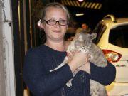 英消防人员花费5000英镑救猫失败,猫却自己回了家