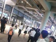 警方出手!房产中介在港珠澳大桥口岸围堵旅客,多人受行拘处罚