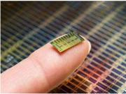"""英最大独立微芯片公司:中美技术战中""""选择中国"""""""