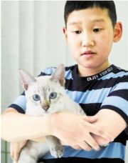 小学生申请带猫上学 校长:同意
