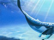 首次!华人获世界科学奖 其海洋蓝色能源技术或解决世界能源需求