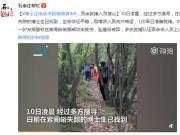 博士进山遭熊袭击,百余救援人员搜山终于找到,其脸部受伤严重