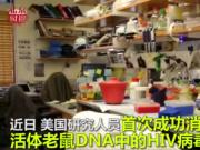 艾滋病有望被治愈!基因编辑清除HIV
