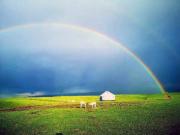 新疆发布国内首家彩虹预报 游客:没想到真的看到了