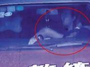 男子举报官员与自己妻子有染 两人车内亲热被拍