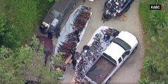 美国豪宅搜出超过1000把枪 场面如军火库震惊警察