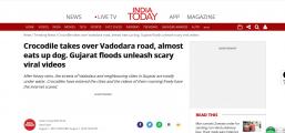 """吓!暴雨过后,印度多个街头惊现鳄鱼""""闲逛"""""""