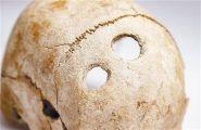 开颅手术 史前人类头骨上发现奇特孔洞