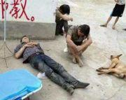 村民围殴偷狗贼致死法院肯定见义勇为 但仍属于故意伤害