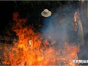巴西4万军人赴亚马孙雨林灭火,当地媒体指责总统损害国家形象