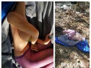 充气娃娃算干垃圾还是湿垃圾?