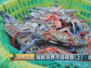 长相一样的螃蟹有的卖68元有的卖25元 有什么区别?