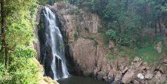 太惨!小象从泰国考艾地狱瀑布跌落,5头大象为救小宝宝全部摔死