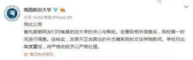 南昌航空大学教师:香港暴徒都是孩子没整死人