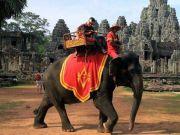 2020年起 柬埔寨吴哥窟禁止骑大象
