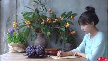 李子柒式短视频走红海外的启示