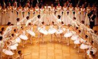 芭蕾名校曝丑闻:让未成年少女干这事