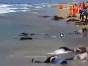 美国大批新冠患者跳海自杀尸体冲上岸?真相曝光
