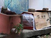 厄瓜多尔街道现多具尸体 市民抱怨:无法忍受尸体散发出的味道