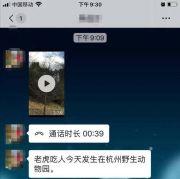 谣言:杭州野生动物世界老虎吃人了?3分39秒视频在群里疯传!已报警!