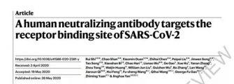 今日《自然》重磅:中国科学家找到强效新冠中和抗体