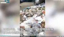 警钟!北京新发地市场商户扔大量蔬菜海鲜