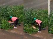 情侣草丛缠绵,被愤怒的邻居大妈用木板狠打严厉教育