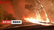 到处都是山火,美国加州告急!摄影师开车拍下恐怖一幕:宛如地狱之路