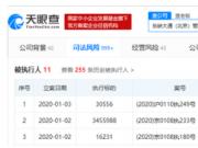 ofo新年再成被执行人 执行标的超350万