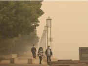 堪培拉浓烟锁城,口罩几乎脱销,澳洲山火为何烧了4个月?