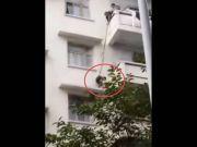 老人用绳吊孙子下楼救猫 网友:孙子买猫送的?