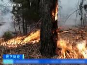 真的假的?澳山火烟雾竟然飘至南美?