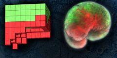 首个活体机器人诞生 可编程会自愈超级计算机设计