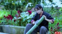 """网红江湖几周一个新格局 谁将是下一个""""李子柒""""?"""