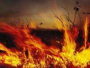 2019年全国十大自然灾害公布,四川木里森林火灾等在列