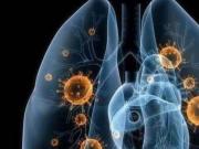 北京、深圳出现新型冠状病毒感染的肺炎病例