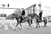 两男子在北京闹市街头骑马 交警回应(图)