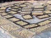 东北300人包2万个饺子放地上速冻 网友却说暖化了