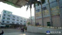 深圳一公司突然倒闭,法院紧急介入完成保全,街道垫付四百万欠薪