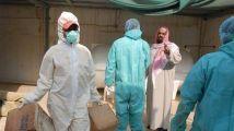 世界动物卫生组织:沙特爆发高致病性H5N8禽流感