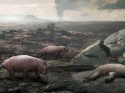 大灭绝每6500万年发生一次?科学家推算了一下,不好又到时间了!