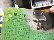 武大出版社回应刊物称果子狸可吃:已下架