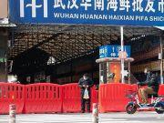 """华南海鲜市场不是病毒发源地,中科院团队基因追踪""""零号病人""""再进一步"""