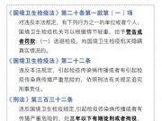 上海:入境不如实申报健康状况或将追究刑责