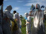 突发破案!新冠病毒来源找到了?意大利一新发现证实:中国不需要向谁道歉